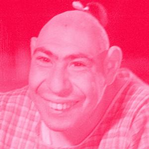 Schlitzy looking happy in pink